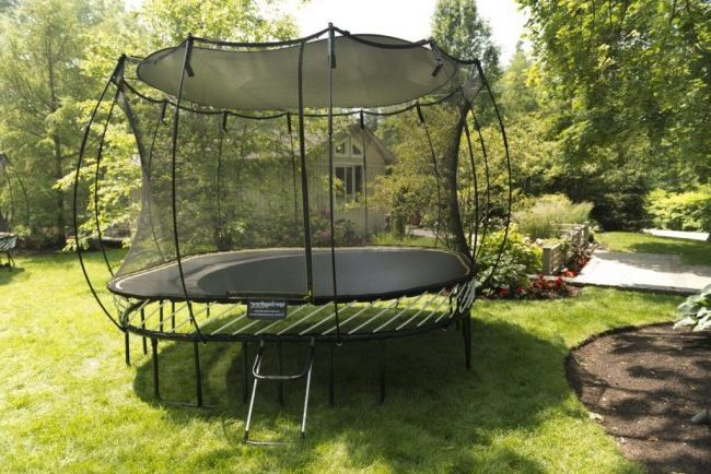 Things To Consider About How Much a Springfree Trampoline Is